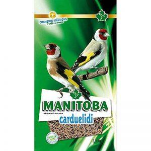 MANITOBA Pour Nourrir Les Oiseaux Carduelidi 800 Grammes Nourriture Pour Oiseaux de la marque Manitoba image 0 produit
