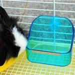 Mkouo Plat et bol Gamelle d'eau alimentaire en plastique Double utilisation Boîte Petit Animal Pet Mangeoire pour lapin cochon Galesaur Hamster (couleur aléatoire) de la marque Mkouo image 4 produit