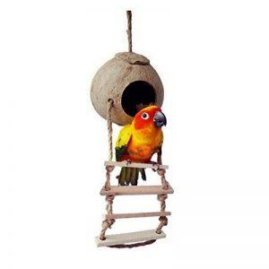 Naturel de noix de coco Hideaway Oiseaux Jouets décoratifs Nid d'oiseau Cage Maison avec échelle de la marque Hypeety image 0 produit