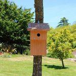 Nichoir à balcon pour oiseaux mésanges bleues Ø28mm en bois, fabrication artisanale de la marque Nichoirs-Mangeoires image 1 produit