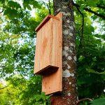Nichoir à chauve souris - Nichoir pour pipistrelle - Fabrication artisanale en bois de la marque Nichoirs-Mangeoires image 1 produit