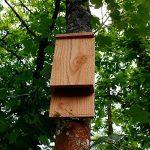 Nichoir à chauve souris - Nichoir pour pipistrelle - Fabrication artisanale en bois de la marque Nichoirs-Mangeoires image 4 produit
