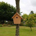 Nichoir maisonnette pour oiseaux mésanges bleues Ø28mm en bois, fabrication artisanale de la marque Nichoirs-Mangeoires image 2 produit