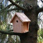 Nichoir maisonnette pour oiseaux mésanges bleues Ø28mm en bois, fabrication artisanale de la marque Nichoirs-Mangeoires image 5 produit