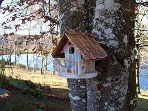 nichoir oiseau fait maison TOP 1 image 0 produit