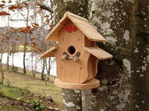 nichoir oiseau fait maison TOP 3 image 0 produit