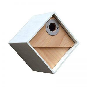 nichoir oiseaux design TOP 7 image 0 produit