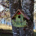 Nichoir à oiseaux,Maison à oiseaux PRODUIT FRANCAIS, 23 cm haut, vert pomme brossé, Villa à oiseaux pour jardin colorés, fait avec du bois massif Douglas et pin, tout est vissé, lasuré 3-fois avec lasure acrylique. Nous sommes membre de la chambre d'artis image 1 produit