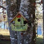 Nichoir à oiseaux,Maison à oiseaux PRODUIT FRANCAIS, 23 cm haut, vert pomme brossé, Villa à oiseaux pour jardin colorés, fait avec du bois massif Douglas et pin, tout est vissé, lasuré 3-fois avec lasure acrylique. Nous sommes membre de la chambre d'artis image 2 produit