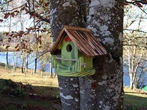 Nichoir à oiseaux,Maison à oiseaux PRODUIT FRANCAIS, 23 cm haut, vert pomme brossé, Villa à oiseaux pour jardin colorés, fait avec du bois massif Douglas et pin, tout est vissé, lasuré 3-fois avec lasure acrylique. Nous sommes membre de la chambre d'artis image 0 produit