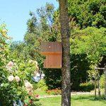 Nichoir oiseaux semi ouvert pour Rougegorges,... en bois massif, fabrication artisanale de la marque Nichoirs-Mangeoires image 2 produit