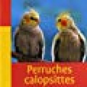 nichoir perruche calopsitte TOP 0 image 0 produit