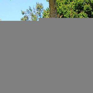 Nichoir à Rouge-gorges en bois massif, nichoir semi-ouvert, Fabrication artisanale de la marque Nichoirs-Mangeoires image 0 produit