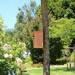 Nichoir à Rouge-gorges en bois massif, nichoir semi-ouvert, Fabrication artisanale de la marque Nichoirs-Mangeoires image 2 produit