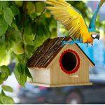 nid en bois pour oiseaux TOP 7 image 1 produit