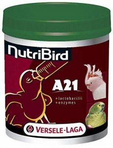 Nobby Versele Laga - Aliment élevage Oiseaux Exotiques - Nutribird A21-800 G de la marque Nobby image 0 produit