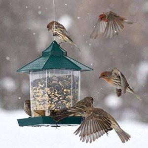 nourrir oiseaux été TOP 4 image 0 produit