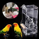 nourrir oiseaux été TOP 6 image 4 produit
