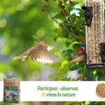 nourriture oiseaux du jardin TOP 2 image 4 produit