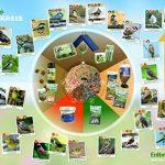 nourriture oiseaux jardin TOP 2 image 4 produit