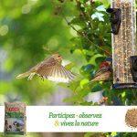 nourriture oiseaux jardin TOP 4 image 4 produit