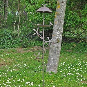 oiseaux de nos jardins en hiver TOP 10 image 0 produit