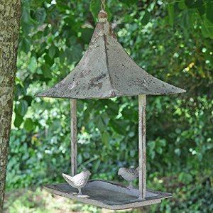 oiseaux de nos jardins en hiver TOP 7 image 0 produit