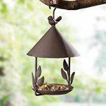 oiseaux en métal pour jardins TOP 10 image 4 produit
