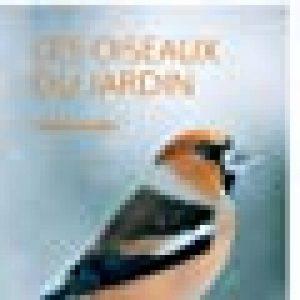 oiseaux insectivores jardin TOP 0 image 0 produit