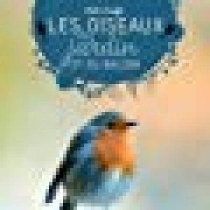 oiseaux insectivores jardin TOP 1 image 0 produit