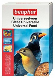 oiseaux insectivores jardin TOP 5 image 0 produit