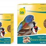 oiseaux insectivores TOP 6 image 1 produit