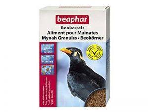 oiseaux insectivores TOP 8 image 0 produit