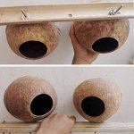OMEM Maison du Hamster Bird Maison de noix de coco,noix de coco coquillages Peut fixe en bambou,cages à oiseaux,cages pour hamster(M) de la marque OMEM image 2 produit