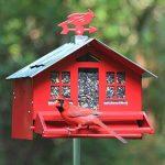 Opus 338 Mangeoire à oiseaux anti-écureuil Squirrel-Be-Gone II de la marque Opus image 1 produit