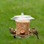 Opus 733 Mangeoire à Oiseau Transparent 900 g de la marque Opus image 2 produit