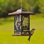 Opus 8504-2 Mangeoire à oiseaux lanterne sauvage de la marque Opus image 2 produit