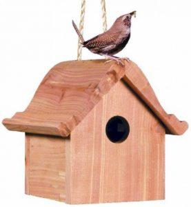 Opus Cabane en bois pour petits oiseaux - 50301 de la marque Opus image 0 produit