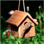 Opus Cabane en bois pour petits oiseaux - 50301 de la marque Opus image 1 produit
