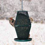 Opus GL00323 Mangeoire à oiseau à deux niveaux en forme de lanterne de la marque Opus image 3 produit