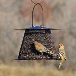 Opus Mangeoire à oiseaux en bronze - BZ00324 de la marque Opus image 3 produit