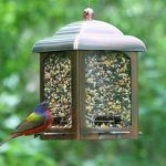 Opus Mangeoire à oiseaux Lanterne en cuivre ancien (900g) - 365 de la marque Opus image 1 produit