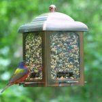 Opus Mangeoire à oiseaux Lanterne en cuivre ancien (900g) - 365 de la marque Opus image 2 produit