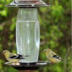 Opus Mangeoire à oiseaux pour graines ou eau - 737S de la marque Opus image 1 produit