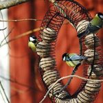 ou placer mangeoire oiseaux TOP 0 image 1 produit