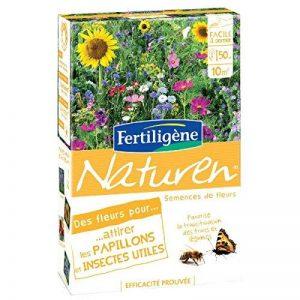 papillon pollinisateur TOP 2 image 0 produit