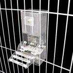 PAS DE saleté Bird Distributeur de graines pour cage Accessoires, maison Oiseaux automatique des systèmes de recherche de nourriture Nourriture station d'alimentation pour les perroquets, avec perchoir, Heavy Duty Acrylique, Moulage en une étape de la mar image 2 produit