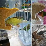 PAS DE saleté pour oiseaux Perroquet Mangeoire automatique intégrée avec perchoir Cage Accessoires pour perruche ondulée perruche calopsitte élégante Finch Canaries Graines de nourriture de la marque XMSSIT image 2 produit