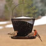 perchoir oiseaux jardin TOP 1 image 4 produit