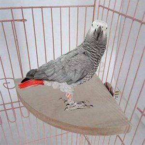 Perchoir Plate-forme Cage Oiseaux en Bois 17x17cm pour Perruche Calopsitte Perroquet Canari Hamster Totoro de la marque Yosoo image 0 produit